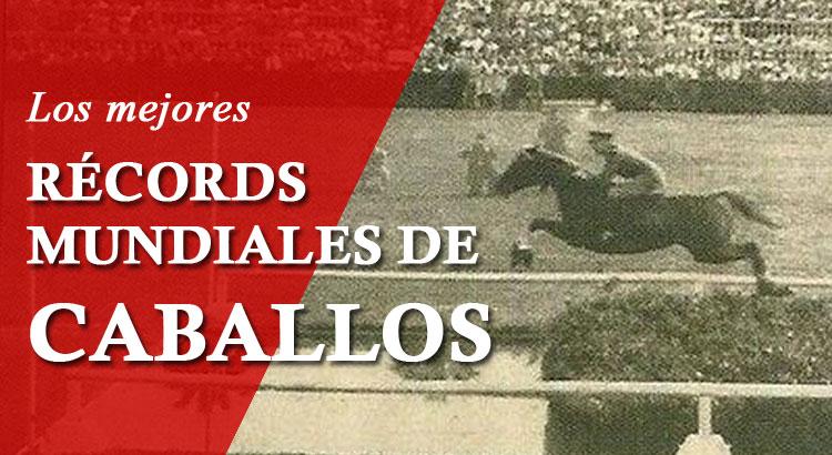 Los mejores Récords Mundiales de Caballos