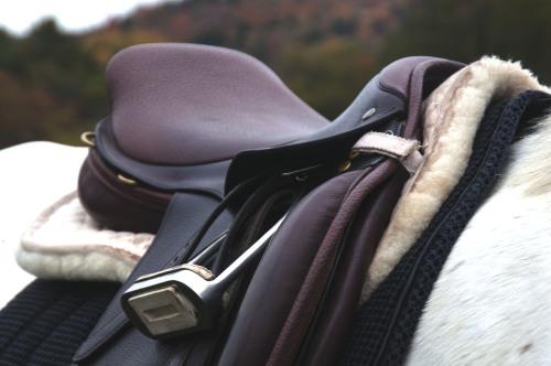 Una silla de montar en un caballo blanco. Invertir en este artículo de equitación es muy importante.