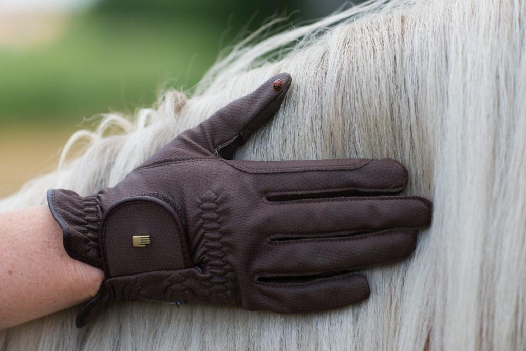 La mano de un jinete con un guante de equitación Roeckl acariciando la crin de un caballo blanco.
