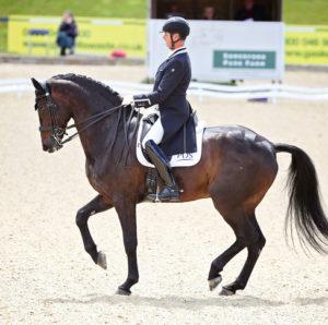Carl Hester montando su caballo en una exhibición. Lleva unos guantes de equitación Roeckl.