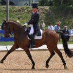 Richard Davidson y Artemis en un concurso. Usan uno de los filetes para caballo Neue Schule