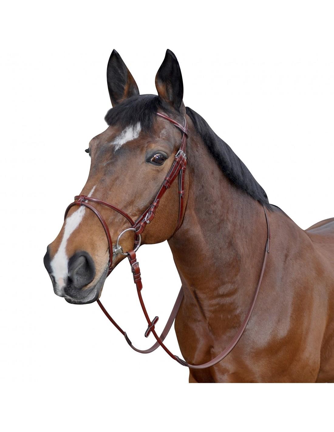 una cabezada de salto simple marca atlanta en un caballo marrón.