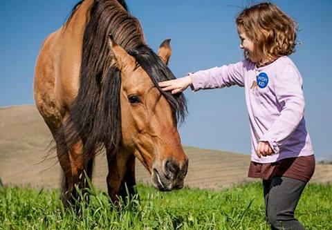 Spirit en el campo siendo acariciado por una de sus jóvenes fans: Corah, una pequeña niña de 6 años.