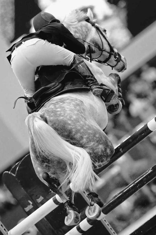 Un jinete con su equipación EGO7 junto a su caballo saltando una valla.