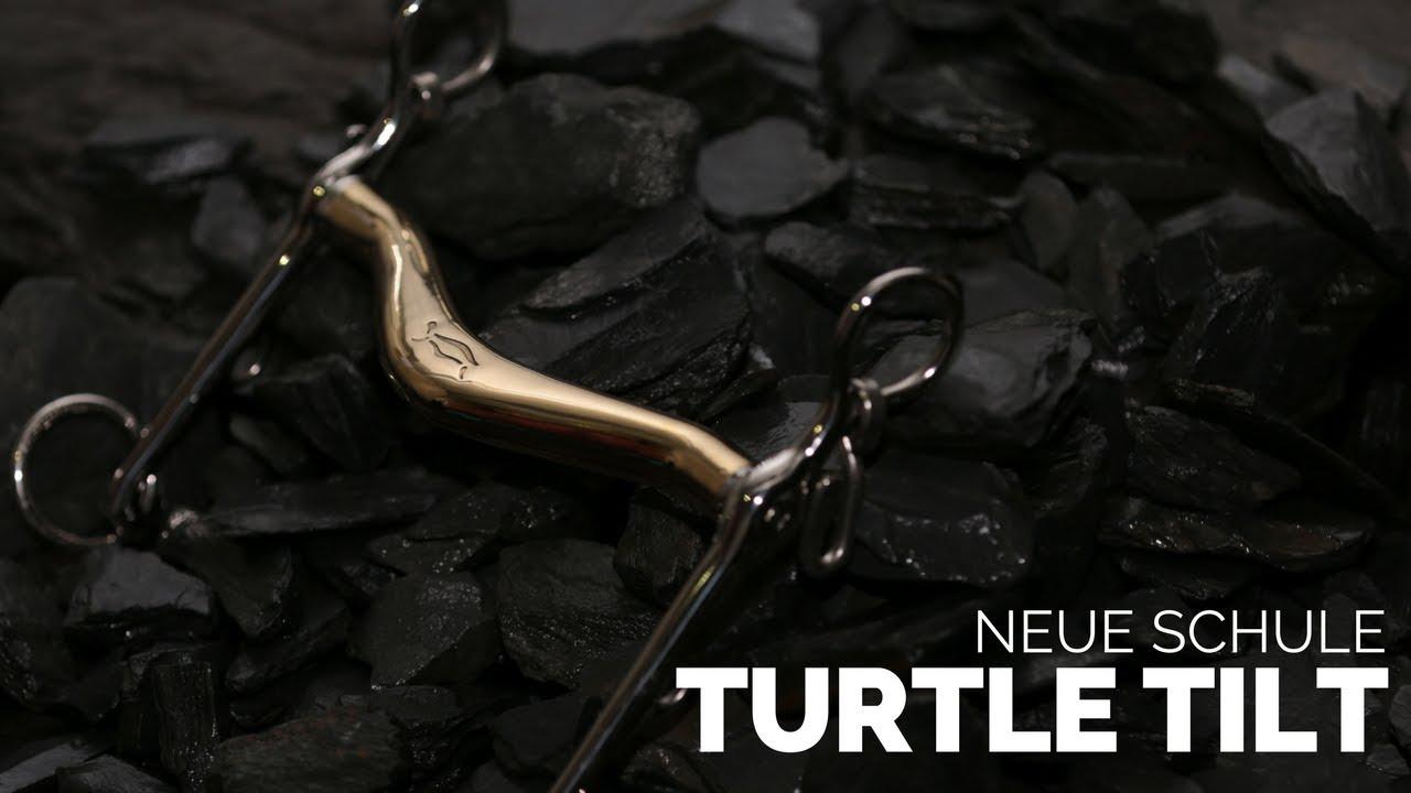 Un filete para caballos color bronce Turtle Tilt