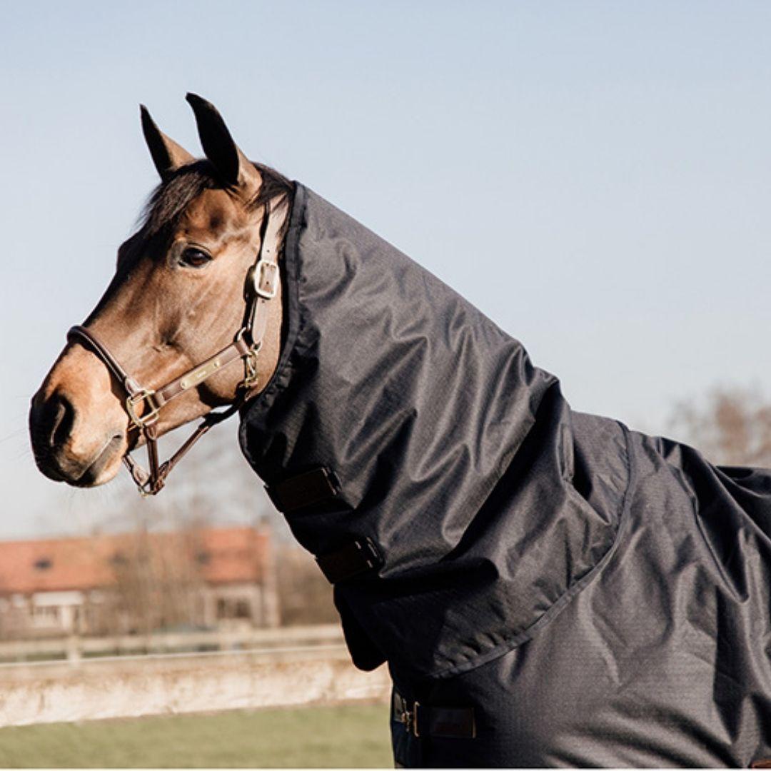 Un caballo marrón con un cuello dotado de forro polar. Esto es muy útil puesto que protege el cuello de rozaduras en la piel.