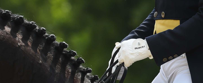 Las manos de un jinete a caballo cubiertas por unos guantes de quitación Roeckl de color blanco.